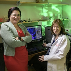 Drs. Nancy Sweitzer and Carol Gregorio, University of Arizona Sarver Heart Center